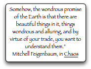 Somehow, the wondrous promise of the Earth is that there are beautiful things in it, ... and you want to understand them.